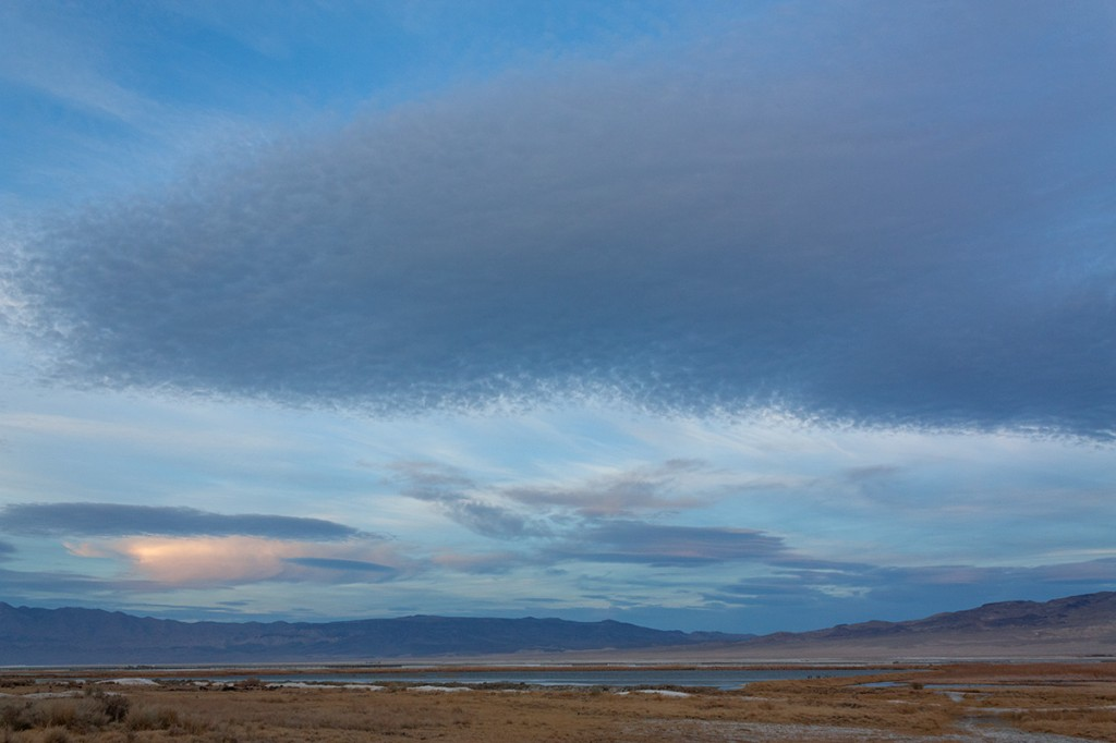"Looking East Across the Wetlands to The Inyo and Coso Ranges from the ""Triangle"""
